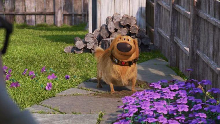 A Vida de Dug | série derivada de UP – Altas Aventuras focada no cachorro Dug ganha trailer, confira