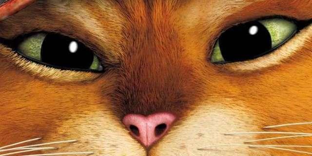 O Gato de Botas 2 | Diretor de Homem Aranha no Aranhaverso irá dirigir a sequência