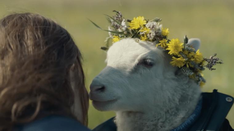 Lamb   Novo suspense com carneiros ganha trailer, confira