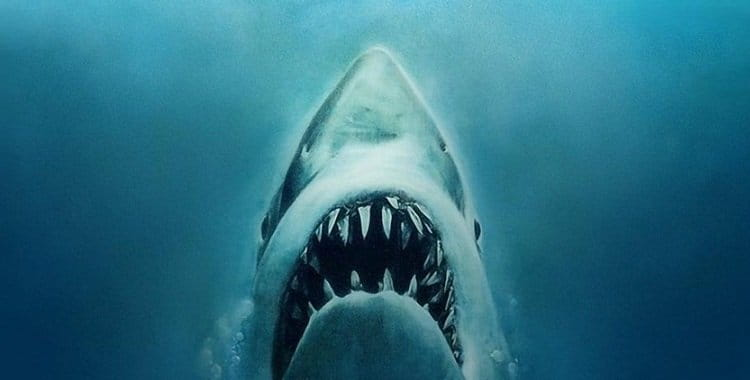 Tubarão | Todos os filmes estão disponíveis na Netflix